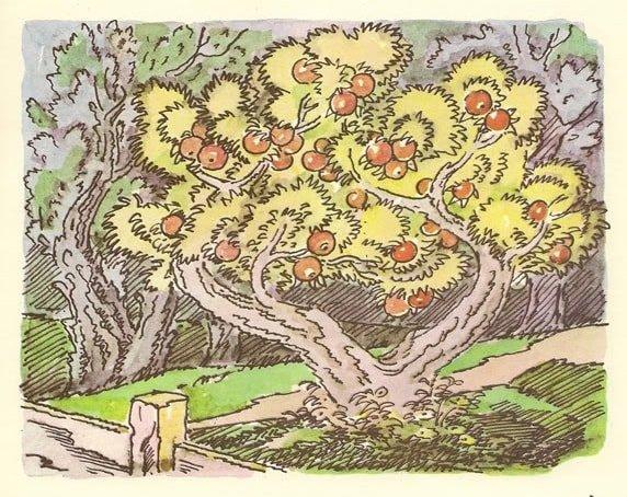 выросла яблонька любимая наша грустная сказка для всей семьи о Хаврошечке и коровушке Бурёнушке читать бесплатно на сайте сказок russkaja-skazka.ru