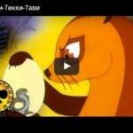 Рикки-Тикки-Тави, Р.Киплинг, мультфильм 1965 год смотреть детские мультфильмы, мультики для ребят онлайн бесплатно советские ссср в хорошем качестве лучшие, много мультфильмов для детей и родителей, малышей и взрослых, анимация мультипликация детство ребёнок сейчас, красивые картинки кадры, рисованные и кукольные отечественного русского российского производства