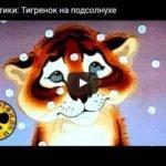 Тигрёнок на подсолнухе, мультфильм 1981 год смотреть детские мультфильмы, мультики для ребят онлайн бесплатно советские ссср в хорошем качестве лучшие, много мультфильмов для детей и родителей, малышей и взрослых, анимация мультипликация детство ребёнок сейчас, красивые картинки кадры, рисованные и кукольные отечественного русского российского производства