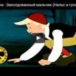 Заколдованный мальчик, мультфильм (1955)