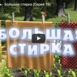 Маша и Медведь 18, мультфильм, Большая стирка 2011 год