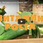Маша и Медведь 30, мультфильм, Витамин роста (2013)