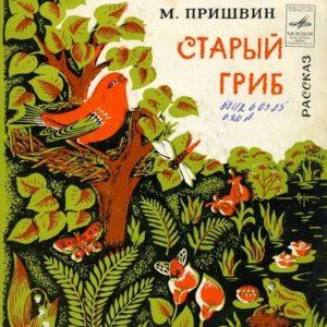 Старый гриб, М.Пришвин, аудиосказка (1977) слушать онлай бесплатно аудиосказки читать не надо, нажмите кнопку проигрывателя пуск play аудио и слушайте весёлые смешные, всё очень просто