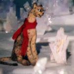 КОАПП. Всюду жизнь, мультфильм (1987) гепард и мартышка рассказывают о природе кукольная сказка детям