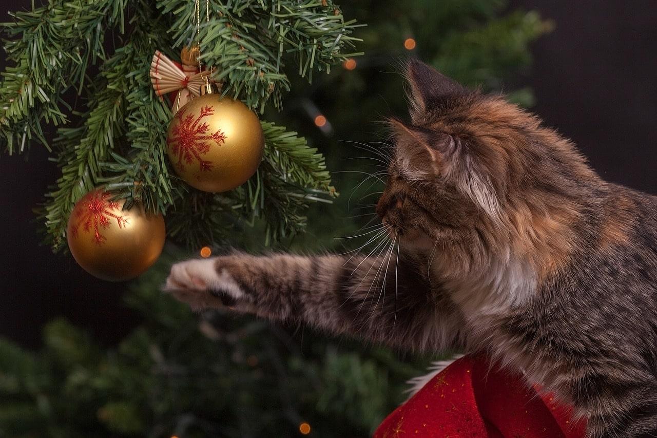 Новый год детский праздник с подарками под елкой
