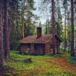 Домик в лесу сказка братьев Гримм с картинкой