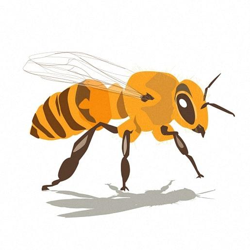 Пчелиная матка сказка братьев Гримм с иллюстрацией