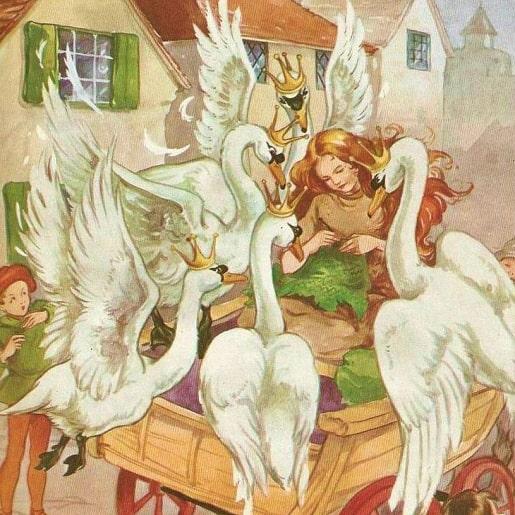 Шесть лебедей сказка братьев Гримм читаем полностью