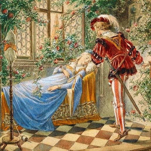 Шиповничек сказка братьев Гримм о принце и принцессе