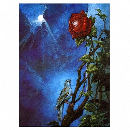 Соловей и роза сказка книжка Оскара Уайльда