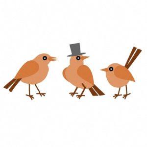 Сказка братьев Гримм Три птички