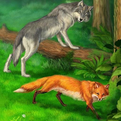 Волк и лиса авторы братья Гримм сказка с картинкой
