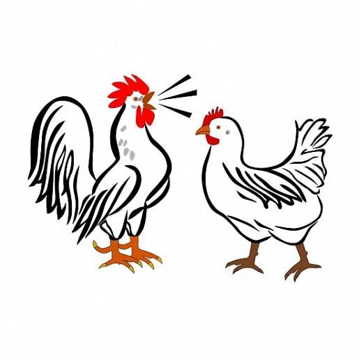 Всякий сброд сказка братьев Гримм про петуха и курицу читайте с иллюстрацией