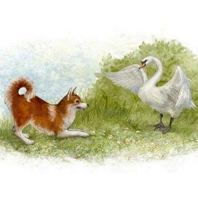 Приемыш рассказ про лебедя приёмыша собаку и деда читаем онлайн школьная программа