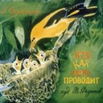 Кто как лето проводит, диафильм (1988) про птиц и зверей рассказ Скебицкого в картинках онлайн