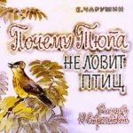 Почему Тюпа не ловит птиц, диафильм (1976) рассказ Чарушина с картинками для детей